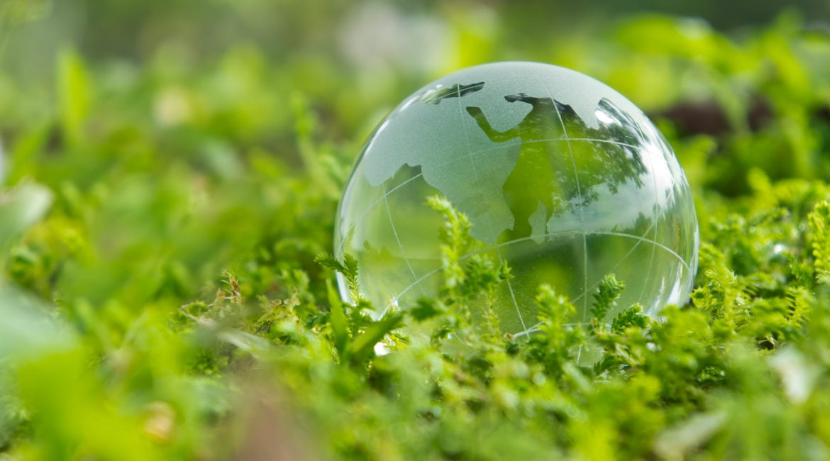 Companies Innovating In The Recycling Space