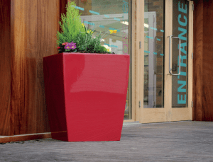 Simply Plants For Stunning affordable office plants & Plant display