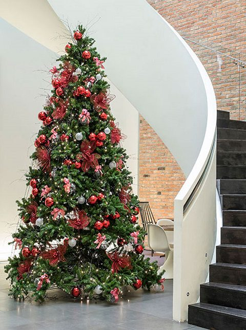 Commercial Christmas-tree-hire